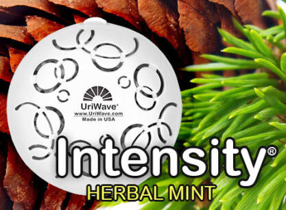Intensity Herbal Mint Karton